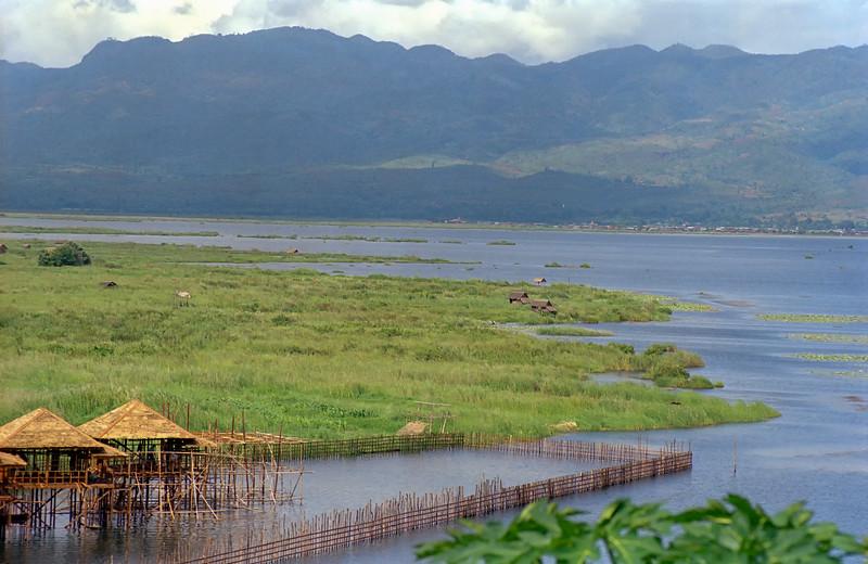 Myanmar Inle Lake 154