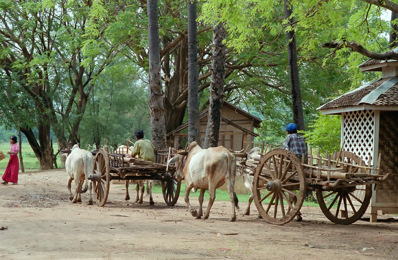 Myanmar Mandalay Region 296