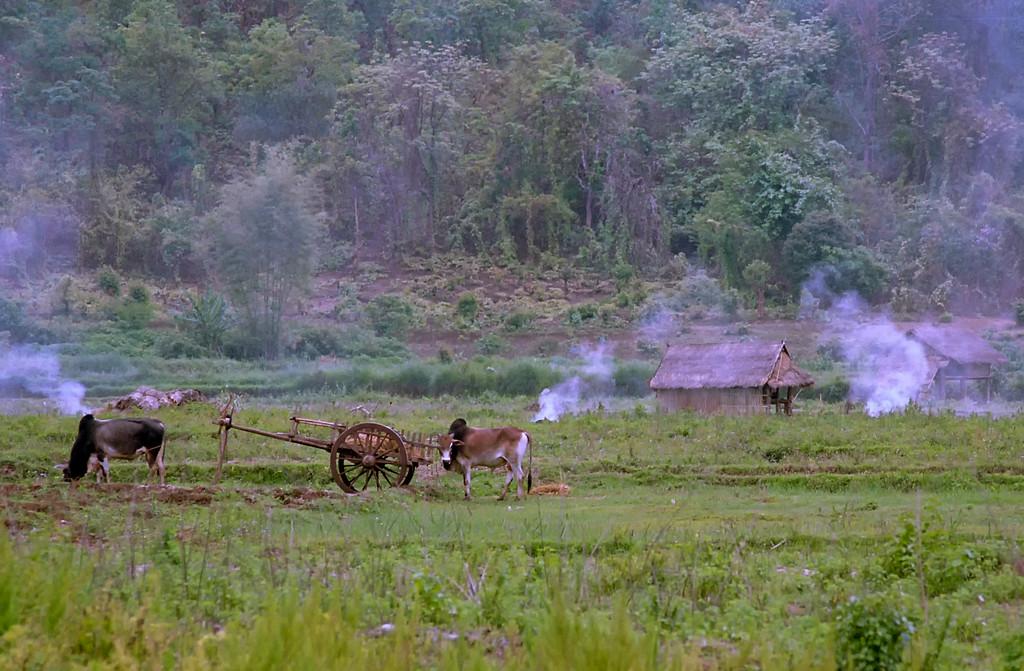 Myanmar Hsipaw 075
