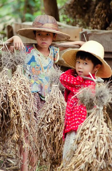 Myanmar Hsipaw 088