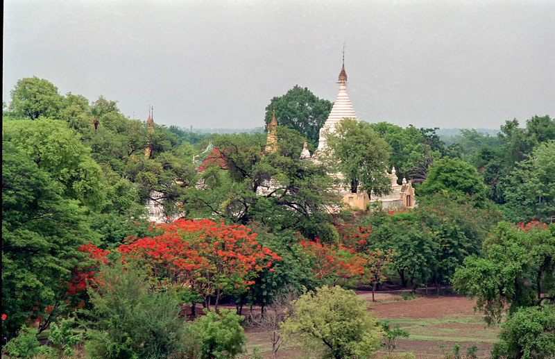 Myanmar Mandalay Region 279