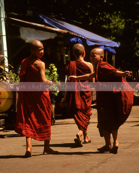 Young Monks returning home