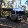 Myrtle Beach SP campsite