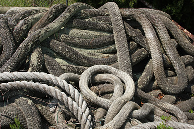 Ropes or snakes?