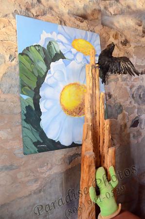 Sunflower pic 0512 4