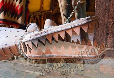 Tin Alligator Crocidle 0512 18