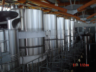 Vats of wine
