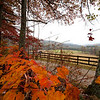 North GA Mountains Autumn
