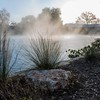 Mist on the Comal River, New Braunfels, TX