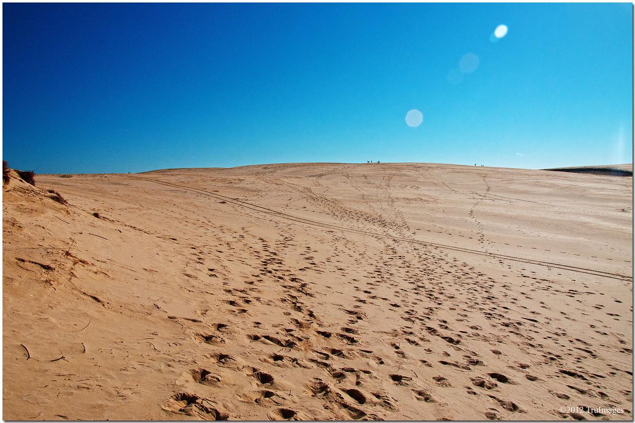 Conquering a sand dune at Jockey's Ridge
