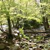 0431 Creek river