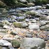 0449 Creek rocks