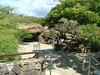 You can get drinks, food and find facilities, here at Hanauma Bay, before or after you go snorkeling.