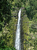 AKAKA FALLS, HILO HAWAII. IF YOU STARE INTO THE FALLS FOR A COUPLE OF MINUTES AND THEN LOOK UP, EVERYTHING WILL APPEAR TO BE MOVING UP.