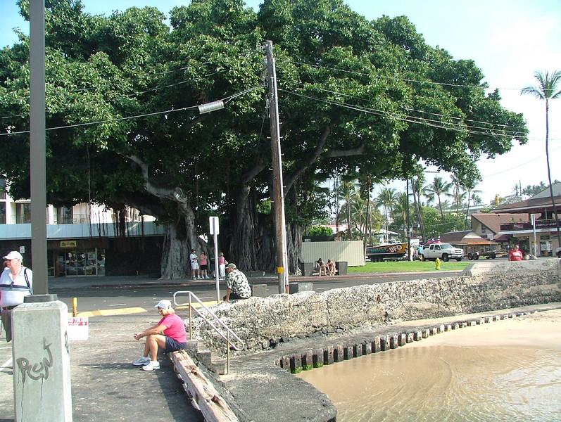 KAHALUU BEACH PARK FOR GREAT SNORKELING