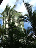 EMBASSY SUITES HOTEL IN WAIKIKI. THIS HOTEL GIVES YOU A MUCH BIGGER SUITE ACCOMMODATION WITH FULL BUFFET BREAKFAST AND EVENING HOR DOURVES PLUS DRINKS. LOCATED OFF BEACH IN THE NEW WAIKIKI BEACHWALK.