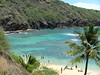 "Hanauma Bay, where my Uncle used to take me when you could hike around the side and jump in the famous but dangerous ""Toilet bowl"".Now this is closed to the public"