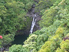 ANOTHER BEAUTIFUL WATERFALL IN THE GARDEN OF EDEN, ON THE ROAD TO HANA MAUI