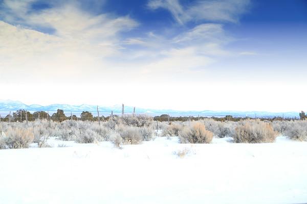 NEVADA Nevada