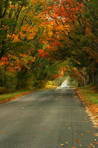 VERMONT COUNTRY ROAD-ST. JOHNSBURY, VT.