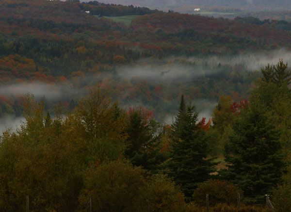 MORNING FOG-ST. JOHNSBURY, VT.