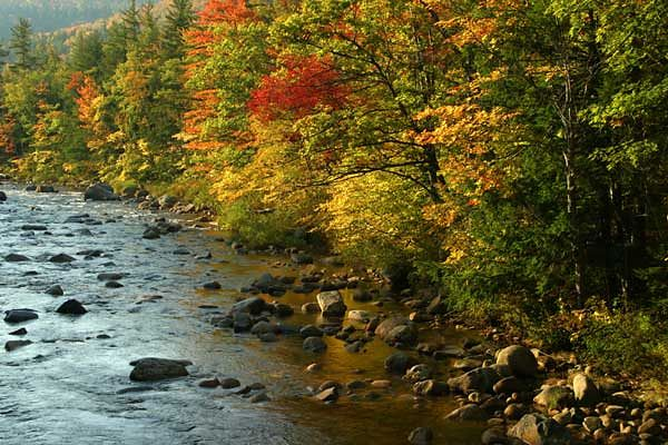 SWIFT RIVER-KANCAMAGUS HWY, NH