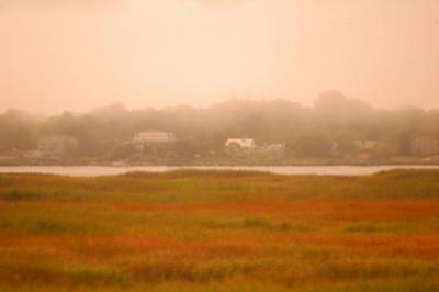 Connecticut Marsh