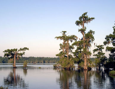 Lake Martin -- near Lafayette
