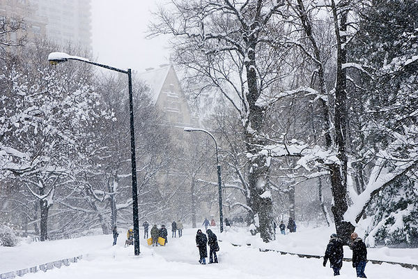 SNOW-PACKED PATH IN CENTRAL PARK