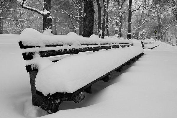 PARK BENCHES-CENTRAL PARK