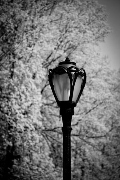 CENTRAL PARK STREET LAMP