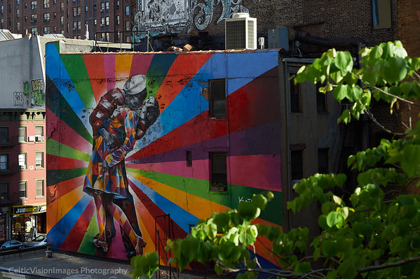2015 __New York City_Art from the High Line