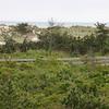 Long Island 6.6.2008