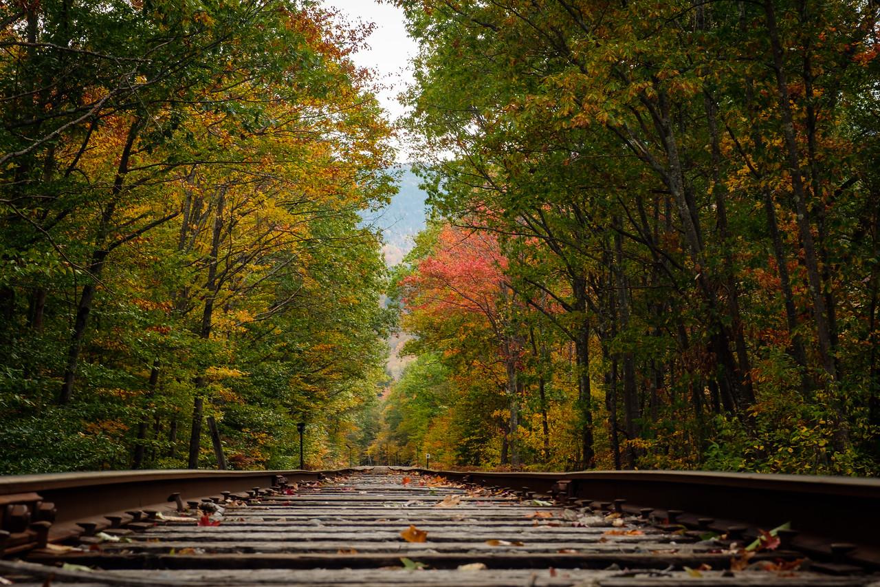 RAILROAD TRACKS NEAR FRANCONIA NOTCH, N.H.