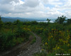 Pittsburg ATV trails<br /> Shatney Mountain - View to the Northeast