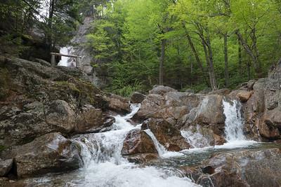 20150525.  Glen Ellis Falls, Jackson, New Hampshire.
