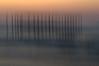 Ghostly Pilings<br /> (vertical swipe of camera)