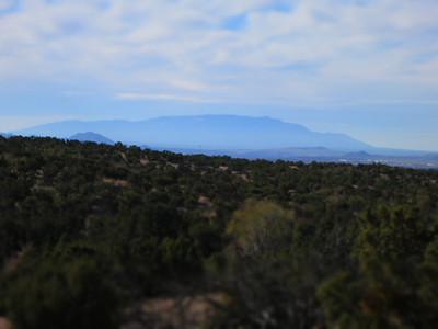 NM Nov 2011
