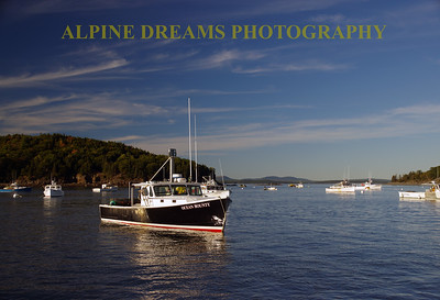 LOBSTER BOATS IN AT BAR HARBOR