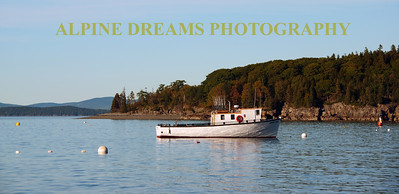 FISHING BOAT AND BIRCHES  IN BAR HARBOR