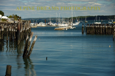 OLD PILINGS AND NEW BOATS