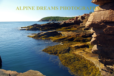 COLOR OF ACADIA COAST