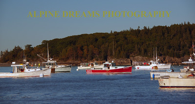 LOBSTER BOATS AT THE READY IN BAR HARBOR