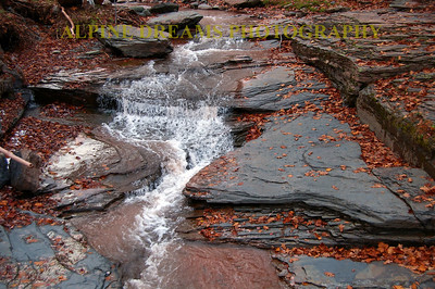 LEAVES-WATER-ROCKS