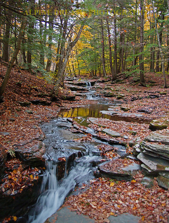 Called Cascading Crystal brook  this shows you the tranquility of this place in the fall.  Note the clarity of the water and the reflection of the yellow tree in the quiet pool in mid-frame.