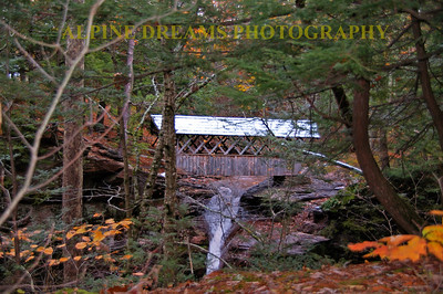 This pedestrian Covered Bridge is a short walk from the Crystal Brook Lodge.  This was shot prior to the Snowstorm on October 29th,2011. I shot several different shots of this bridge over the years and each time it still impresses me.
