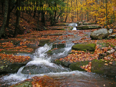 This shows the pure beauty of the Brook in the fall even though there is a slight rain falling.   It did make the leaves shine!