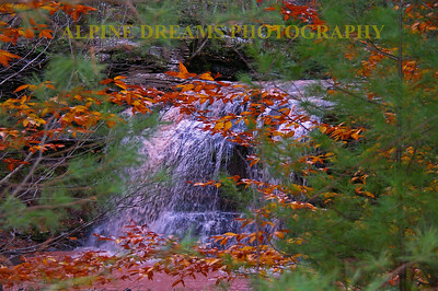 I call this Chocolate Falls in the Fall.   Due to the recent storms there was a lot of color in the roaring brook and Falls this year. It kind of looked like Yooho Chocolate drink.