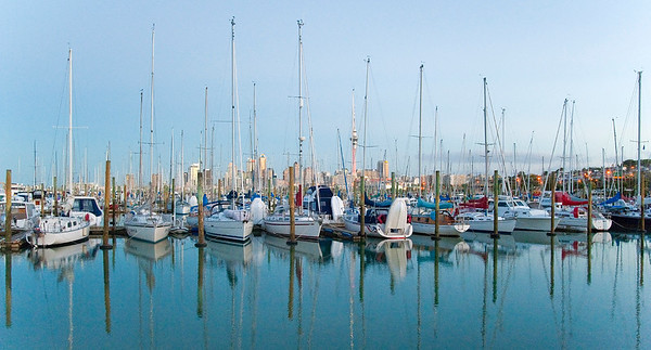 Westhaven marina and the Auckland city skyline.