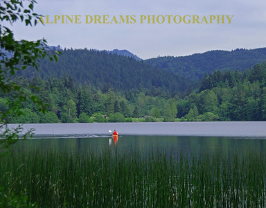 A lone Kayaker's red vest stands out as he paddles across a lake near Bellingham WA.